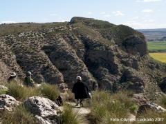 Cantiles El Piul. Cantiles y laguna El Campillo. Parque Regional del Sureste. Rivas-Vaciamadrid. Jornada de apuntes al aire ibre del taller de dibujo de Prima Littera.